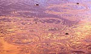 pioggia forte gocce