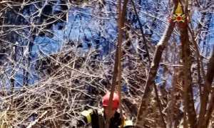 vigili del fuoco rimella salvataggio capra