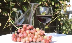 vinomoncrivello